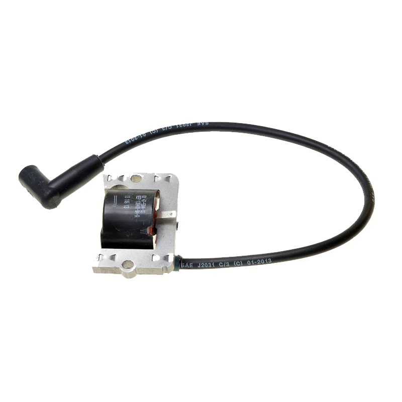 Ignition Module 4758403S