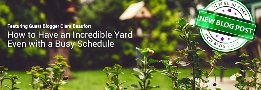 How to have an incredible Yard